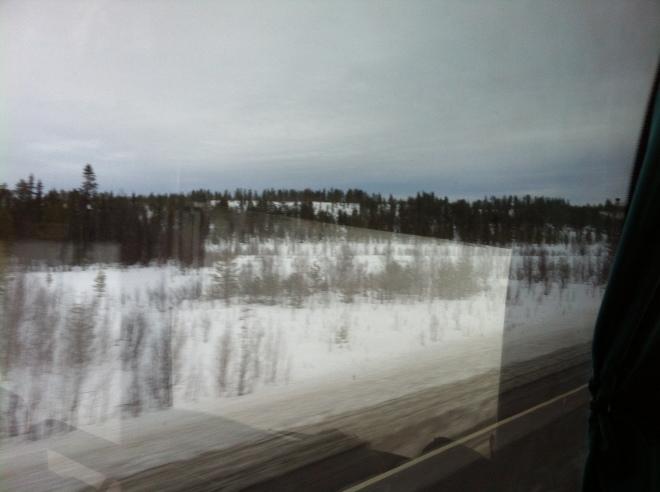 Tundra talvises ilus